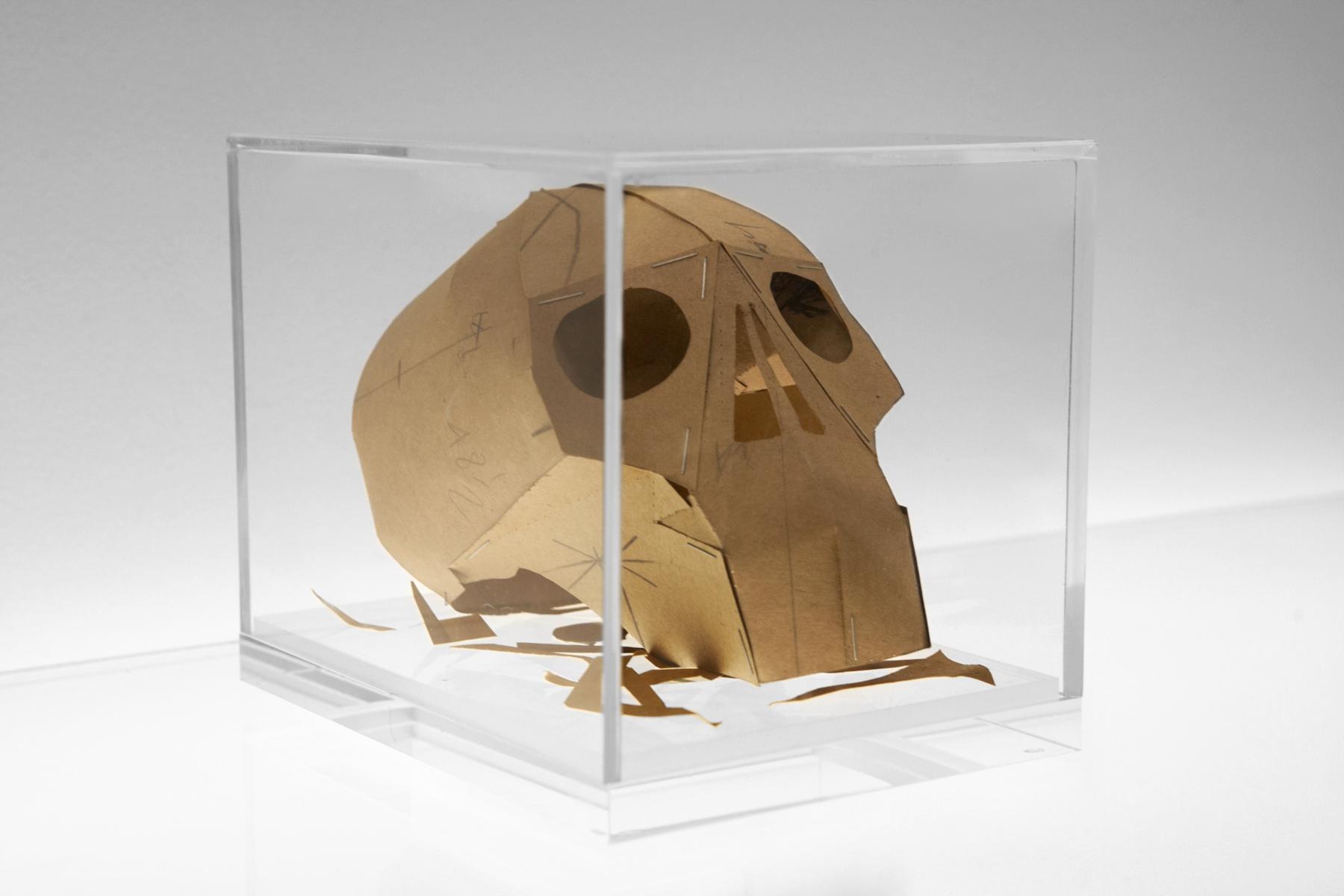 Dead Man's Patterns Memento Mori Skull